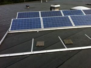zonnepanelen rijsenhout 2